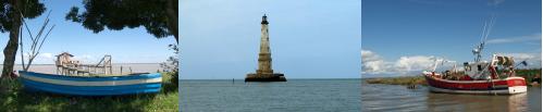 estuaire-mixte.png