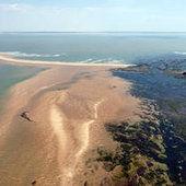 Projet de Parc naturel marin de l'estuaire de la Gironde et des Pertuis charentais : réunions de consultation - Actualités - Gironde - Pertuis - Missions d'étude de parc - Organisation - L'Agence - Agence des aires marines protégées